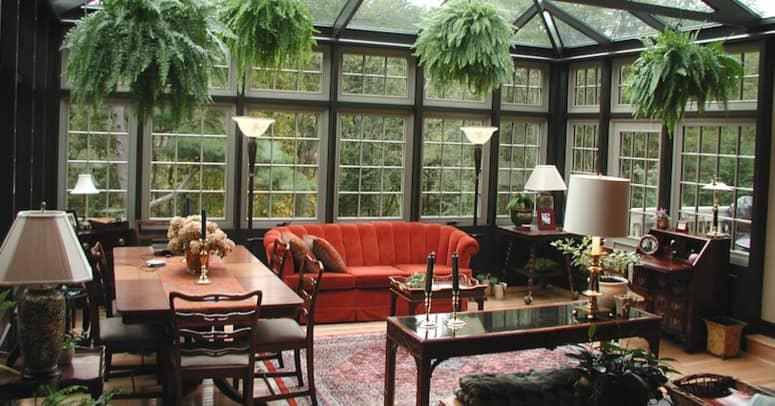 zen room with green plants